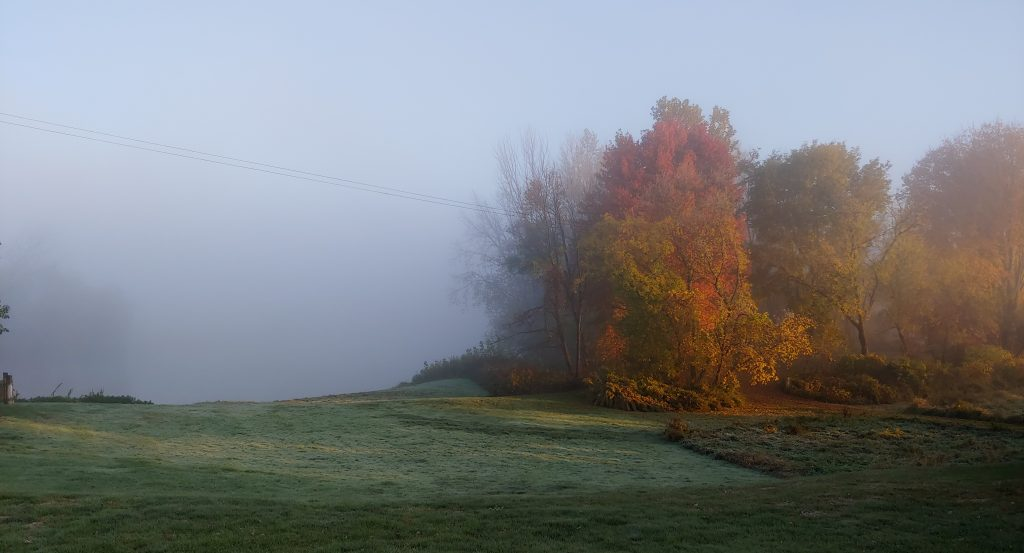 Fish Creek in Central New York, fall color with fog