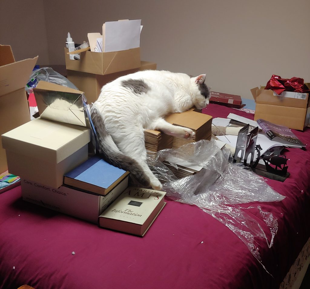 Moving Chaos with Cat